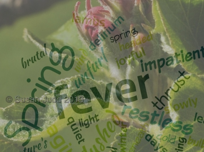 Double exposure apple blossom and word cloud