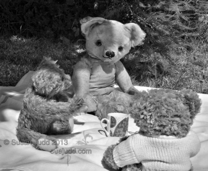 SJudd_teddybearspicnic_15072013_001