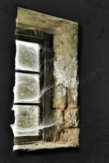 Through the cobwebs