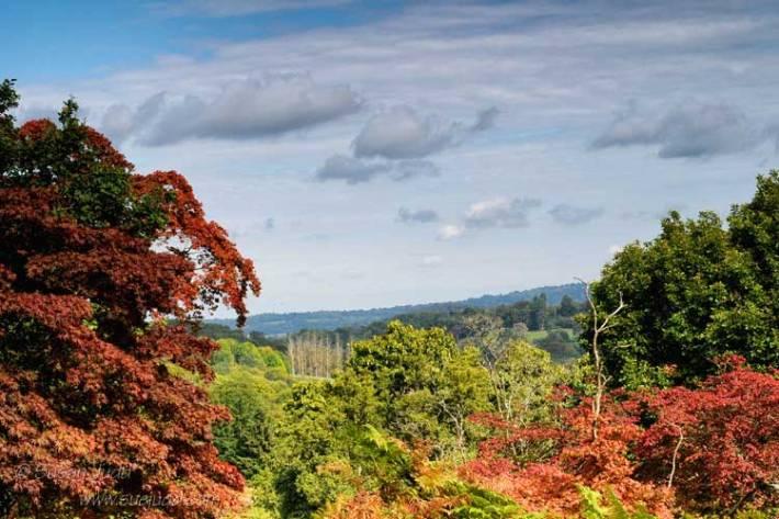 Autumn Colour1