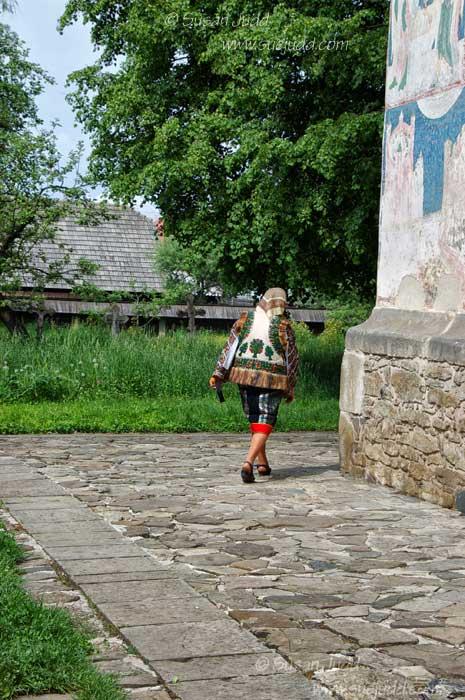 Bucovina again