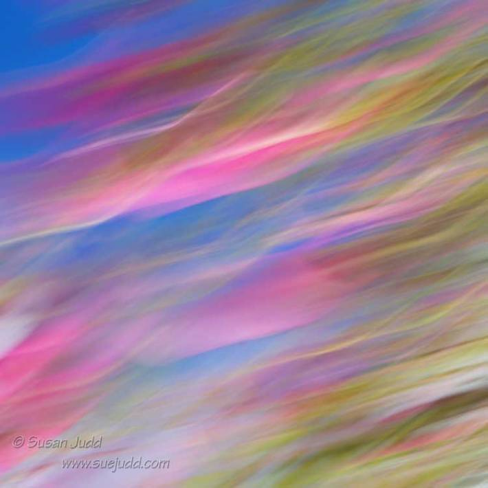 SJudd_Abstract_2015-04-11-63---Version-3