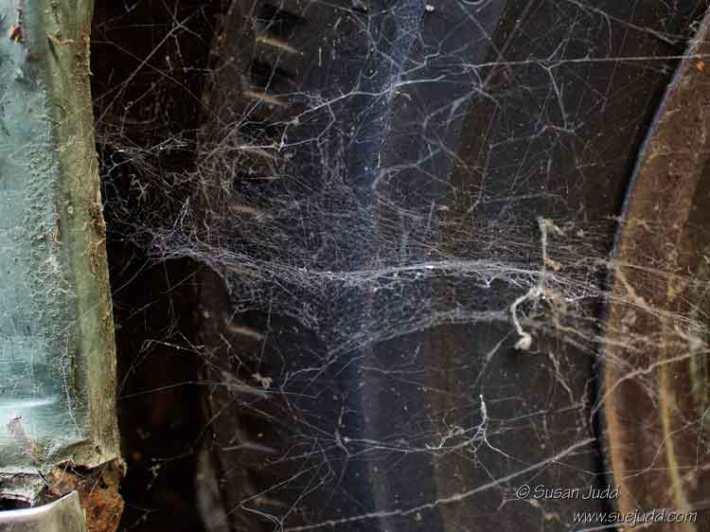 Cobweb with a tiny bit of corrosion