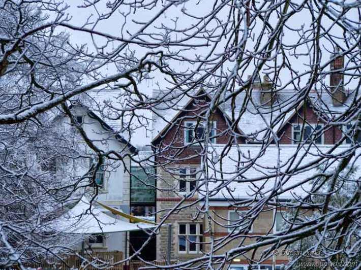 SJudd_UK_Surrey_2016-01-17-5---Version-2