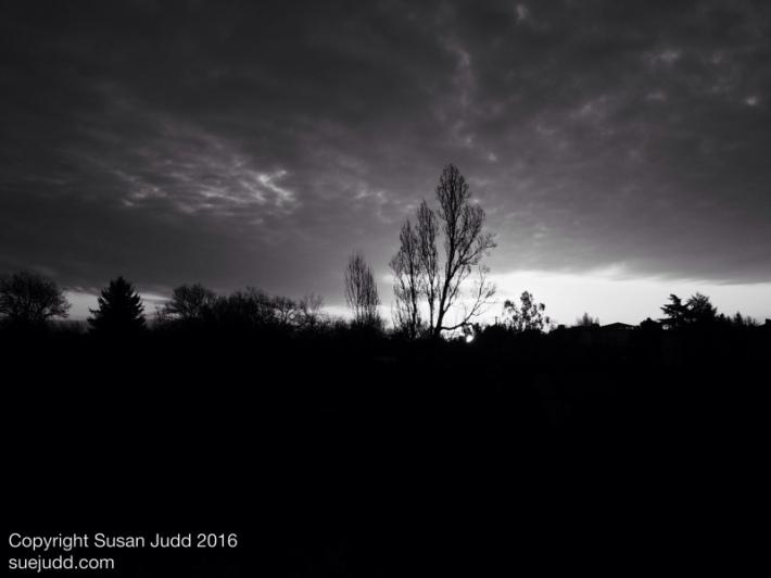 SJudd_Fr_Gironde_100062016 01