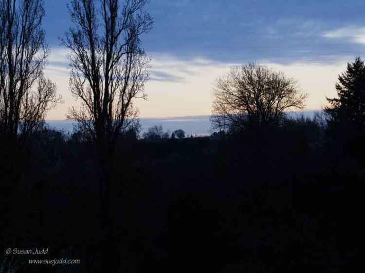 SJudd_Fr_Gironde_2016-03-11-444---Version-2