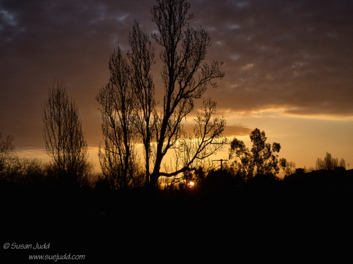 Dawn sun