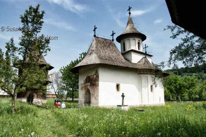 Sitting in a field of wild flowers by a painted church, Bucovina