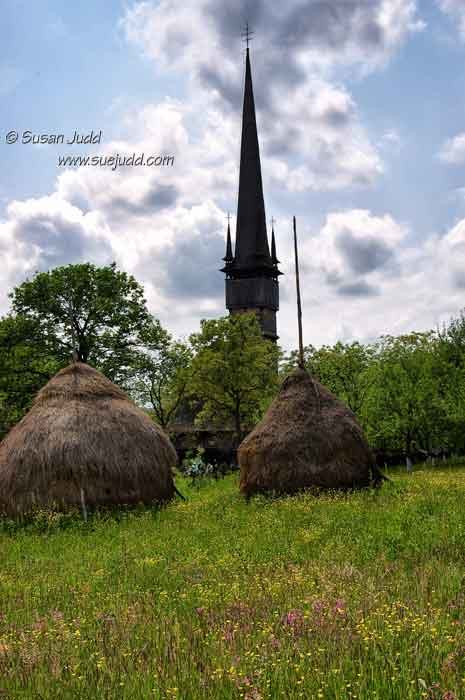 Wild flowers behind a Wooden Church in Maramures