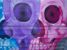 Weird skull