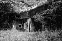 ruins-and-historic-10318