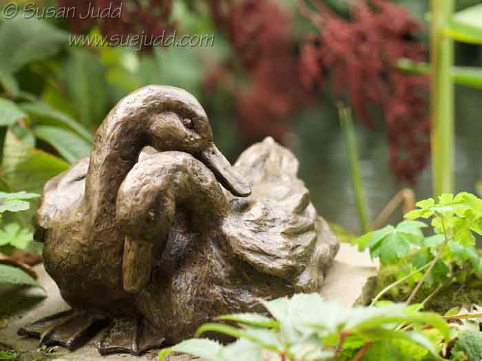 sjudd_gardens_wisley_2016-09-19-8