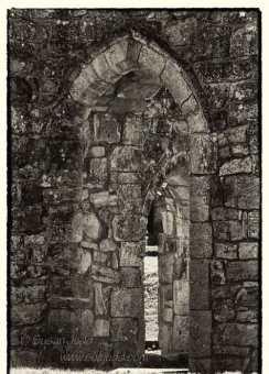 Bayham Abbey 4