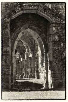 Bayham Abbey 1