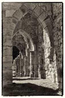 Bayham Abbey 2