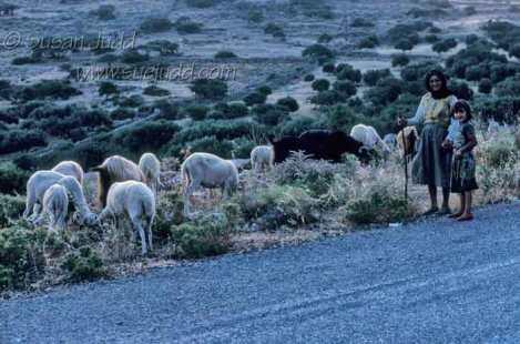 Cretan goatherds