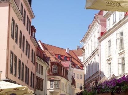 SJudd_ET_Tallinn_052015 1025